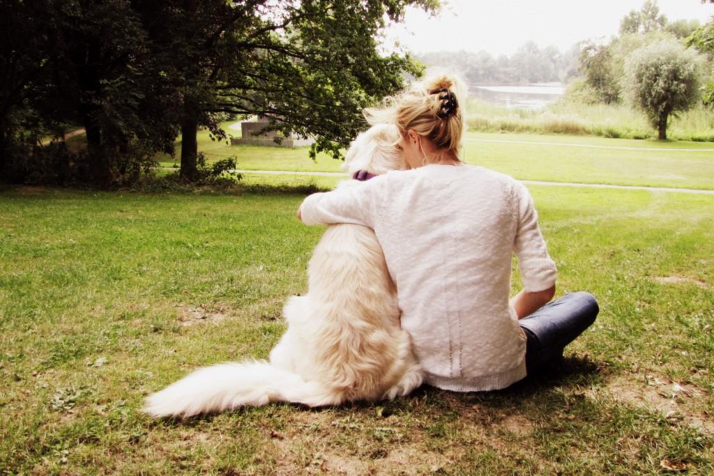 liefde hond