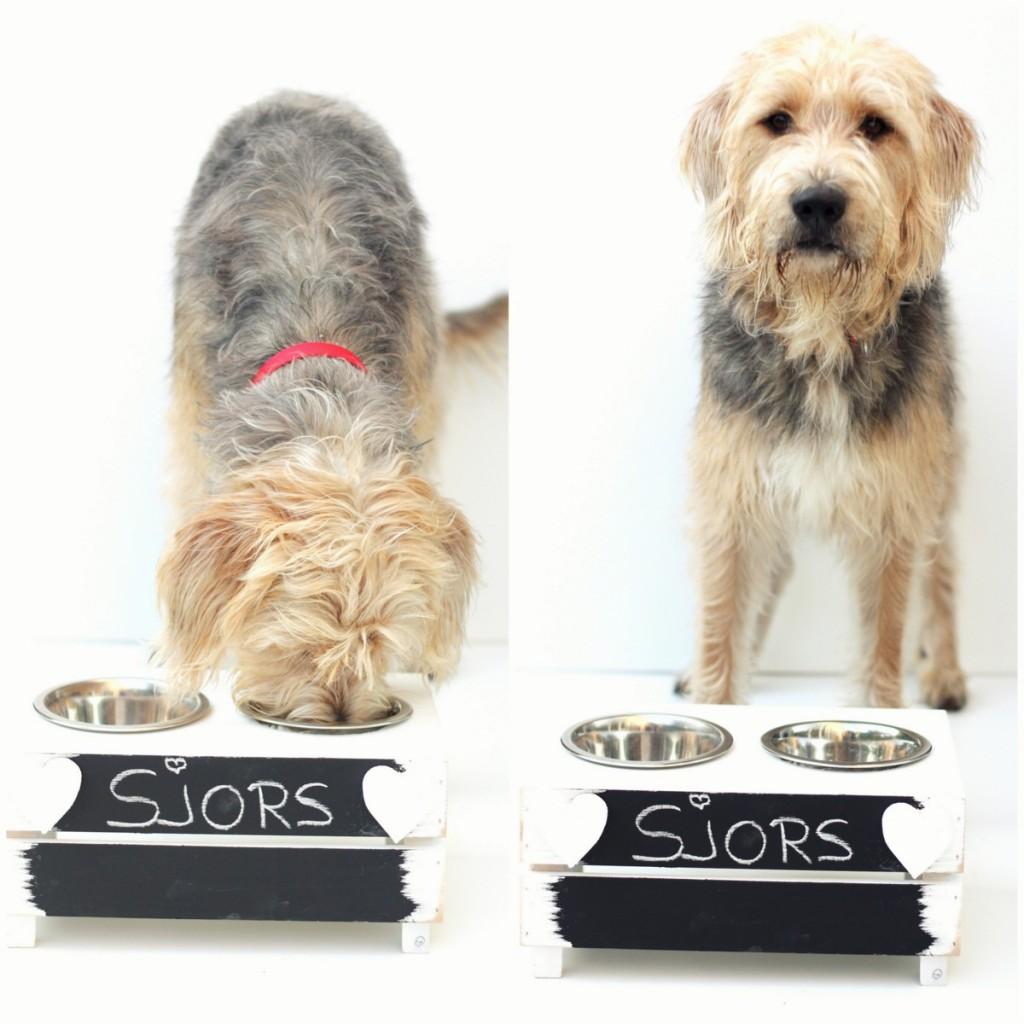DIY honden voerbak
