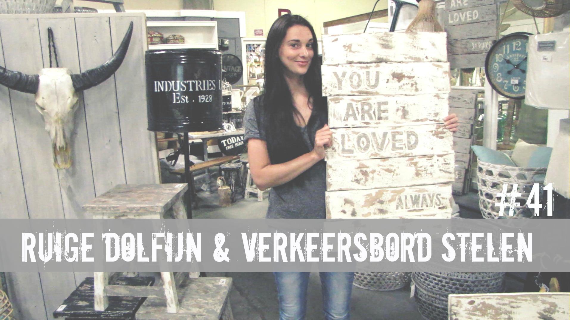 Ruige Dolfijn & Verkeersbord Stelen | IKVROUWVANJOU.NL