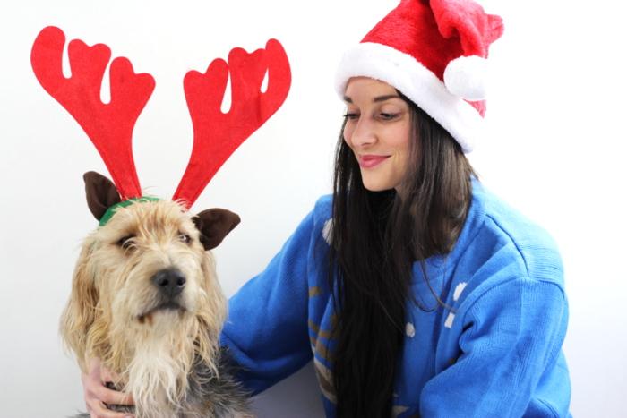 kerst met gescheiden ouders hond