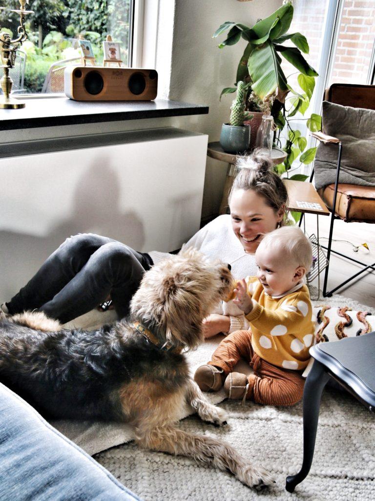 Veilig gehecht, eenkennig, kinderopvang of oppas aan huis?
