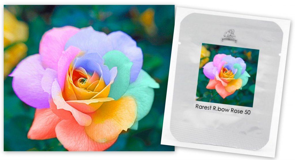 regenboog zaden rozen